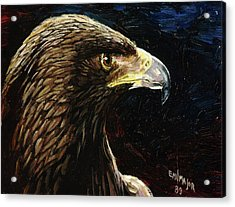 Eagle Profile Acrylic Print by Emil F Major