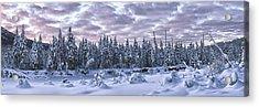 Eagle River Treeline Acrylic Print
