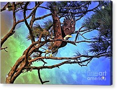 Acrylic Print featuring the painting Eagle Series 2 by Deborah Benoit