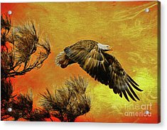 Acrylic Print featuring the painting Eagle Series Strength by Deborah Benoit