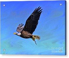 Acrylic Print featuring the photograph Eagle Series Success by Deborah Benoit