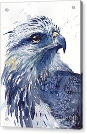 Eagle Watercolor Acrylic Print