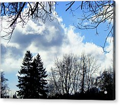 Eagles Nest In Faraway Tree Acrylic Print by Lisa Rose Musselwhite