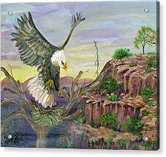 Eagles Nest Acrylic Print by Mikki Alhart
