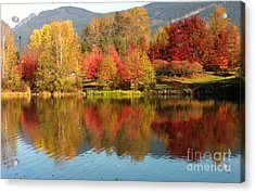 Acrylic Print featuring the painting Early Fall At Lafarge Lake by Rod Jellison