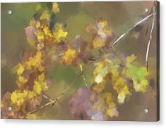 Early Fall Leaves Acrylic Print