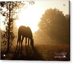 Early Fall Morning Acrylic Print