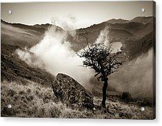 Early Mist, Nant Gwynant Acrylic Print