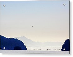 Early Morning Ala Spit Whidbey Island Acrylic Print
