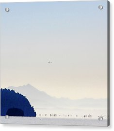 Early Morning Ala Spit Whidbey Island Square Format Acrylic Print