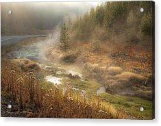 Early Morning Fog Yellowstone Np Acrylic Print