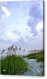 Early Morning In The Dunes Acrylic Print by Alan Hausenflock
