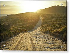 Early Morning Light On 4wd Sand Track Acrylic Print