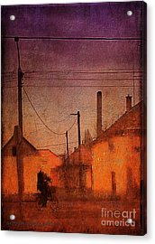 Early Morning Acrylic Print by Mimulux patricia no No