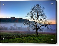 Early Morning Mist In Cades Cove Acrylic Print by Rick Berk