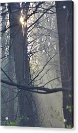 Early Morning Rays Acrylic Print by Bill Cannon