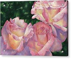 Early Morning Roses Acrylic Print by Sheryl Heatherly Hawkins