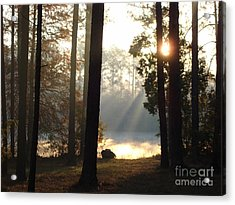 Early Morning Sun Rays On The Lake Acrylic Print by Cindy Hudson