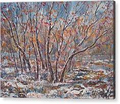 Early Snow. Acrylic Print