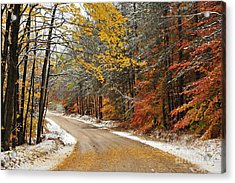 Early Snow Acrylic Print by Terri Gostola