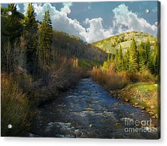 Early Spring Delores River Acrylic Print by Annie Gibbons