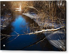 Early Winter Acrylic Print by Karol Livote