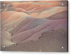 Earth Bodyscape.  Natural Abstract 6 Acrylic Print by Jenny Rainbow