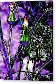 Earth Nail Acrylic Print by Michele Caporaso