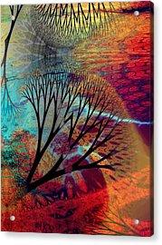 Earth Song 10 Acrylic Print by Helene Kippert