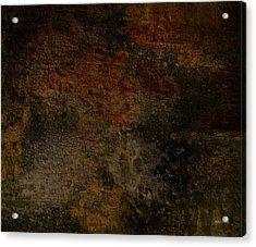 Earth Texture 1 Acrylic Print