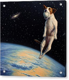 Earthbound Dream Acrylic Print by James W Johnson