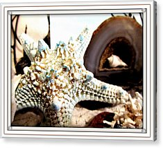 Earth's Jewels Acrylic Print