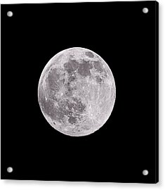 Earth's Moon Acrylic Print by Steve Gadomski