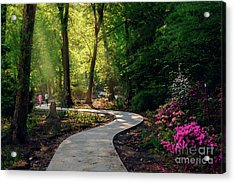 Earyl Morning Walk Through Honor Heights Park Acrylic Print
