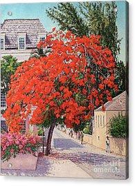 East And Shirley Street Acrylic Print