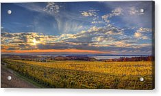East Bay From Old Mission Peninsula Acrylic Print by Twenty Two North Photography