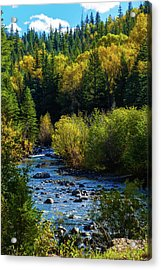 East Fork Autumn Acrylic Print