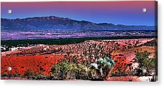 East Of Albuquerque Acrylic Print by David Patterson