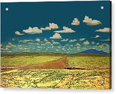 Acrylic Print featuring the digital art East Of Flagstaff Arizona by Kerry Beverly