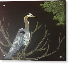 East Tennessee Blue Herron Acrylic Print by Terry Tuley