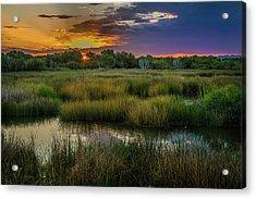 East Wetlands Sunrise Acrylic Print