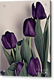 A Display Of Tulips Acrylic Print by Sherry Hallemeier