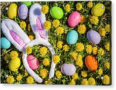 Acrylic Print featuring the photograph Easter Bunny Ears by Teri Virbickis