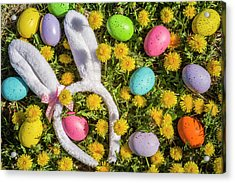 Acrylic Print featuring the photograph Easter Eggs And Bunny Ears by Teri Virbickis