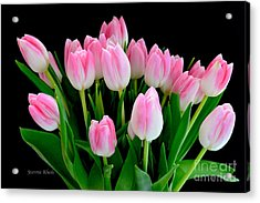 Easter Tulips  Acrylic Print by Jeannie Rhode