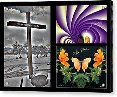 Eastereality Acrylic Print by Greg Taylor