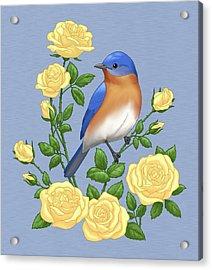 Eastern Bluebird And Yellow Roses Acrylic Print