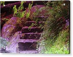 Easy Steps  Acrylic Print by Jeff Swan
