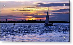 'eat My Dusk' Acrylic Print by Joanne Brown