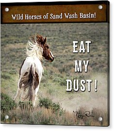 Acrylic Print featuring the photograph Eat My Dust - Collage by Nadja Rider